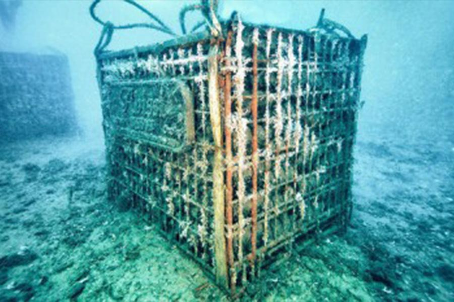 Unterwasserlagerung