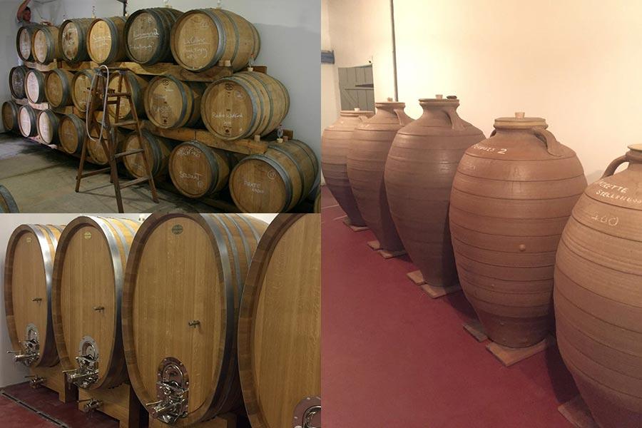 In den Kellern von Alheit Vioneyards - Das Moto derAlheits lautet: 99% Vineyard + 1% Cellar
