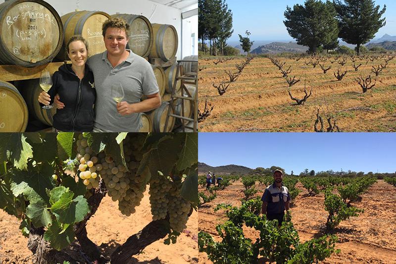 Chris und Suzann Alheit - Terroirwein aus Südafrika