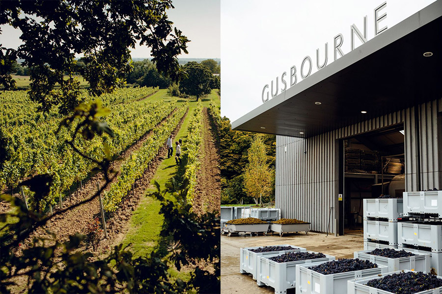 Gusbourne Vinery in Kent, England