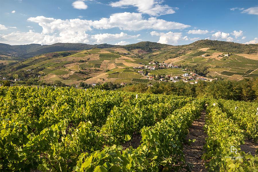 Einfach pittoresk: Die Landschaften im Beaujolais