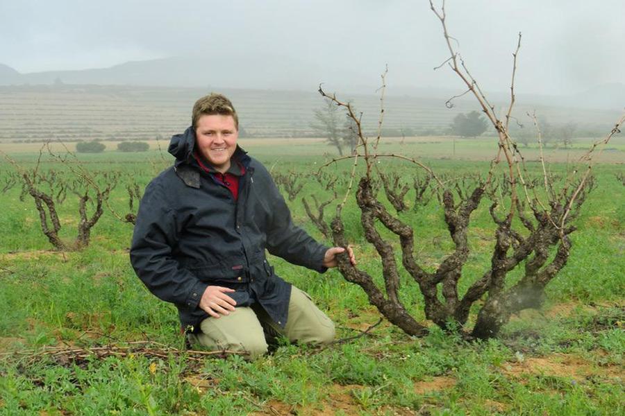Der Südafrikanische Winzer Chris Alheit im Weinberg mit alten Rebstöcken