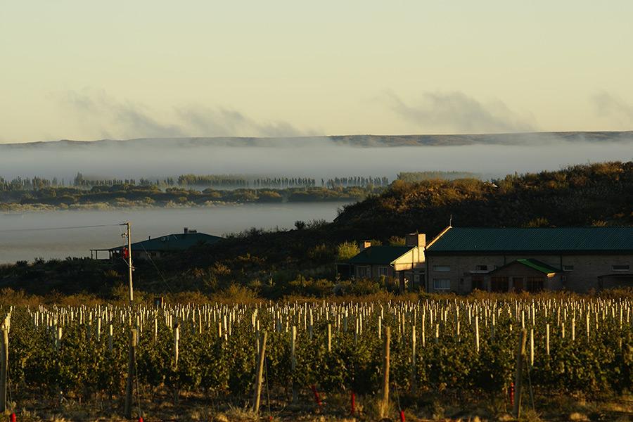 Weingut Bodega Noemia in Patagonien, Argentinien