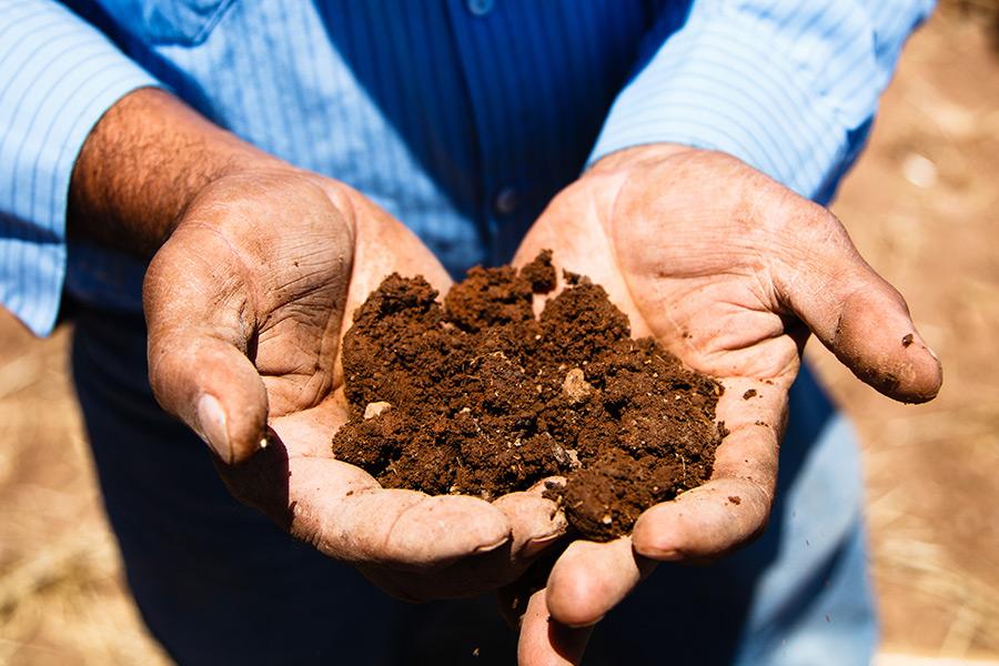 Hanzell Vineyards Soil