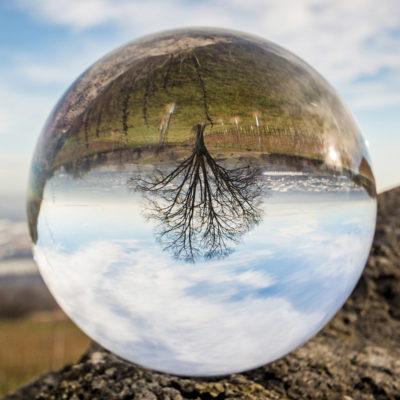 Der Blick in die Glaskugel, oder was davon übrig bleibt