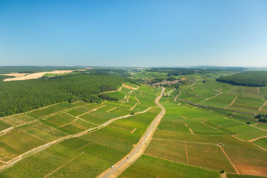 Die Landschaft von Pernand-Vergelesses