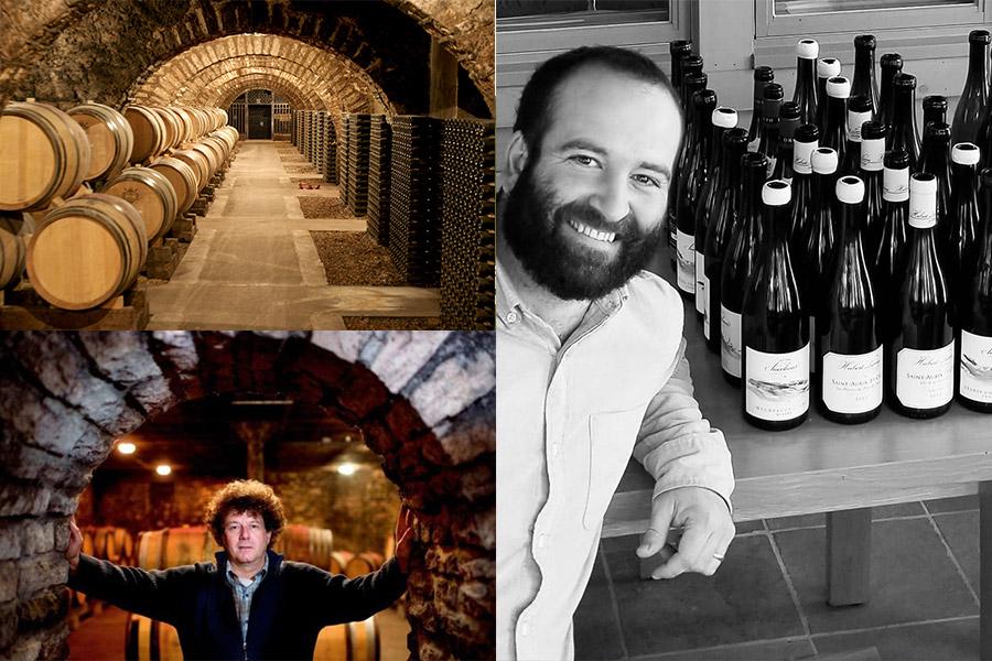 Burgunder Winzer Wein am Limit