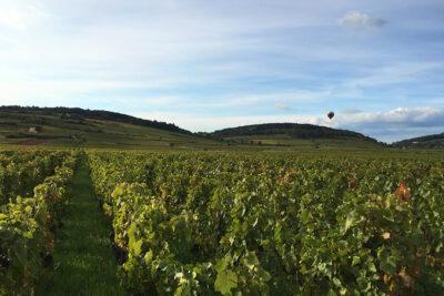 Das Wichtigste über Burgund