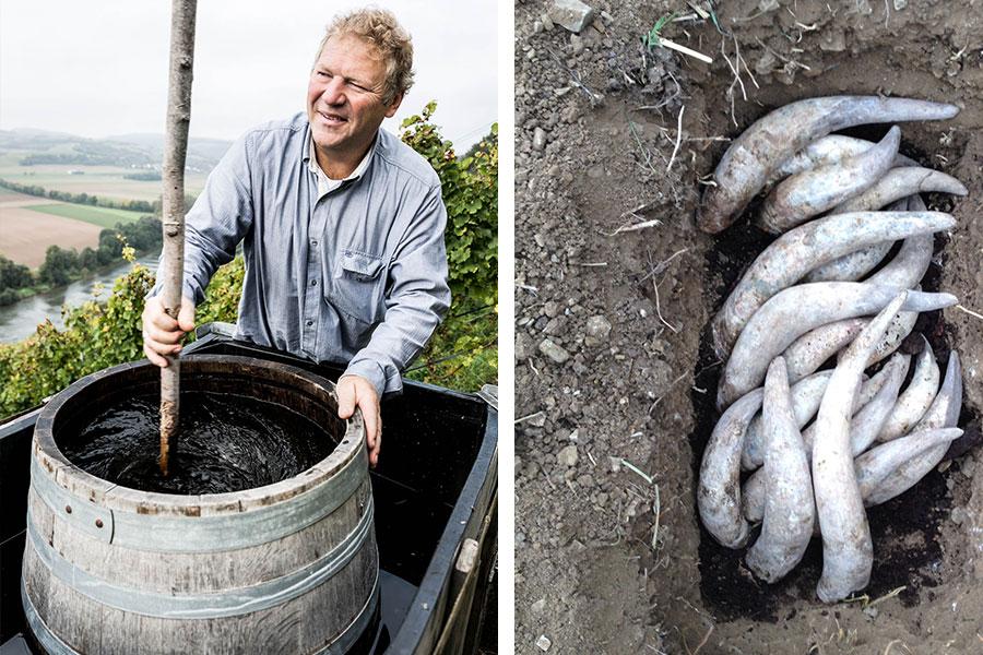 Weingut am Stein Biodyn Hornmist Präparat 500 Dynamisieren